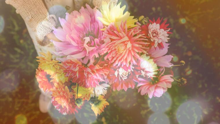 花束とキラキラを合成したアイキャッチ
