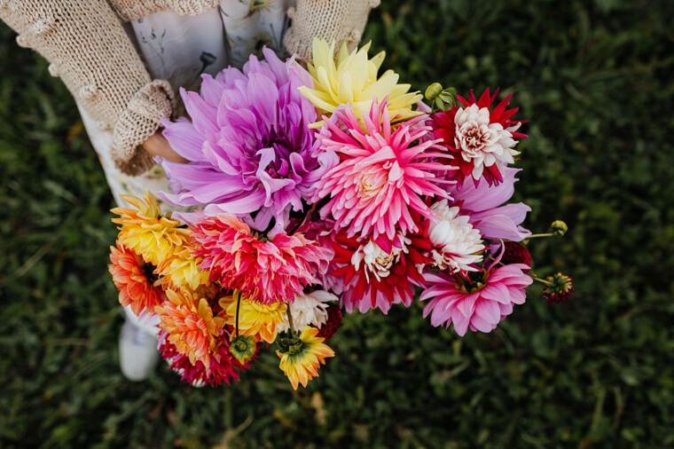 カラフルな花束の画像